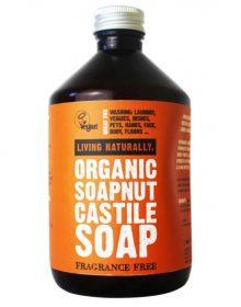 soapnut detergent