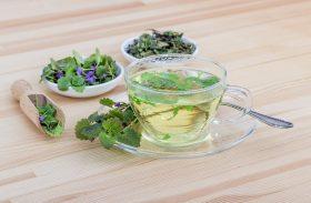 Healthy herbal tea for night sweats