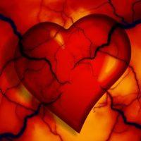 Healthy hearts need cholesterol