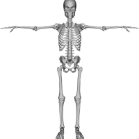 Healthy bones naturally