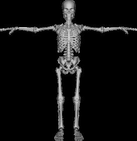 Healthy bones naturally
